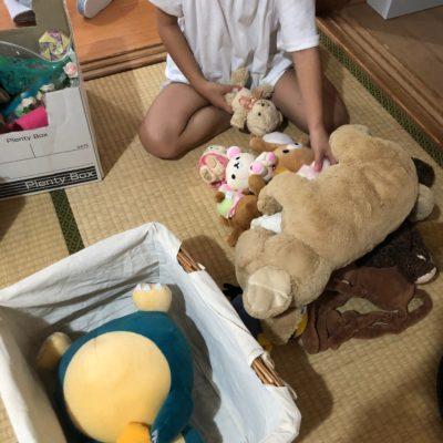 ぬいぐるみの整理 おもちゃ