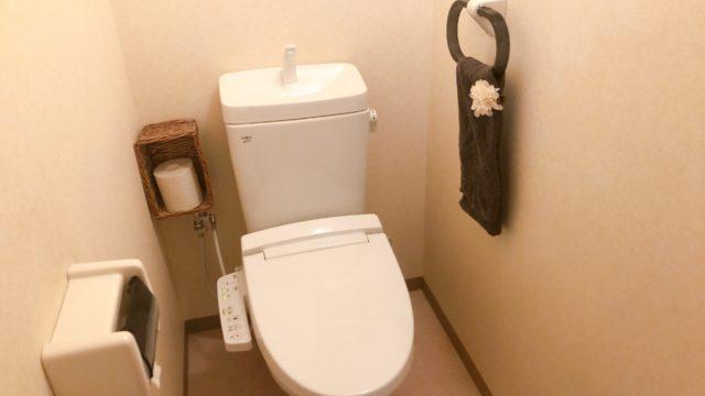 トイレ掃除 ルーティン 脱プラ